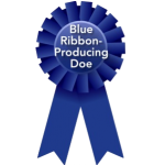 Blue Ribbon Producing