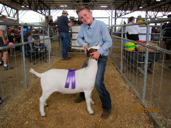 Max wins Grand Champion Junior Showmanship.